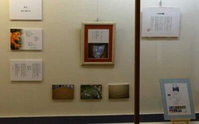 詩と写真と散文 ことばの個展