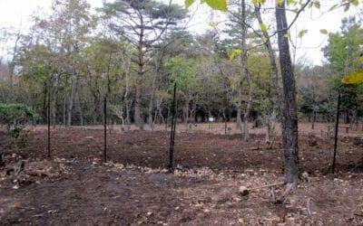 命の森をつくる会 12月8日(木)