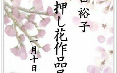 谷口裕子押し花展 1月10日まで