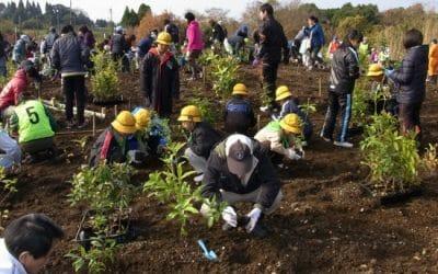 10万本植林プロジェクト