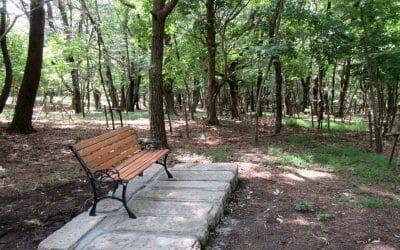 森の休憩所