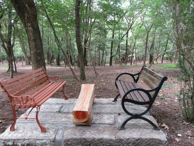 森の休憩2web