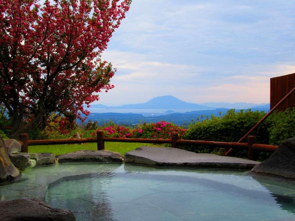 八重桜と桜島